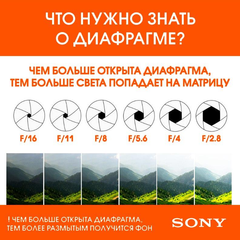 что такое диафрагмальная в фотоаппарате афанасьевна